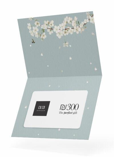 שובר מתנה | PERFECT GIFT 300